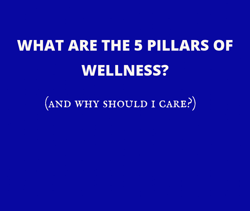 What are the 5 Wellness Pillars? (and Why Should I Care?)